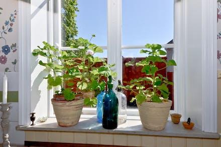 Fönster mot den egna innergården
