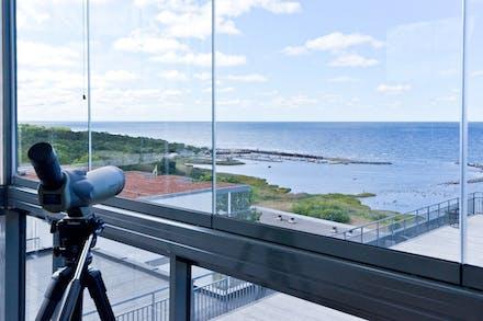 Flundrevikens fiskeläge från balkongen