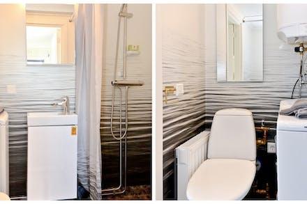 Våtutrymme med wc/dusch och tvättmaskin
