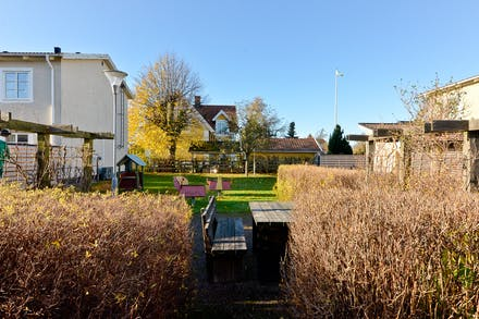 Gemensamma trädgårdsmöbler