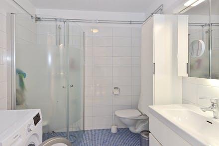 Nyare badrum med dusch och tvättmaskin