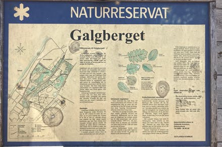 Info om Galgbergets naturreservat