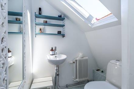 Separat toalett med wc, tvättställ och takfönster