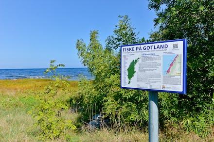 Gotland och Talludden erbjuder även finfina möjligheter för kustfiske av bl.a. Havsöring