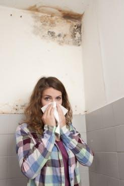 Πώς φεύγει η μυρωδιά από μούχλα